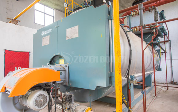 10 tph WNS gas-fired boiler for pharmaceutical factory